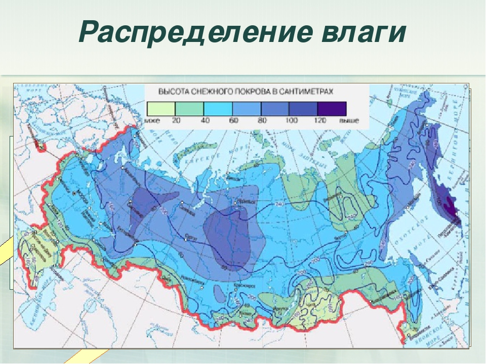 Распределение влаги Атмосферные осадки по территории России распределяются не...