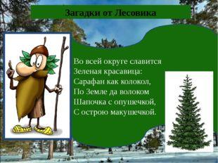 Во всей округе славится Зеленая красавица: Сарафан как колокол, По Земле да в