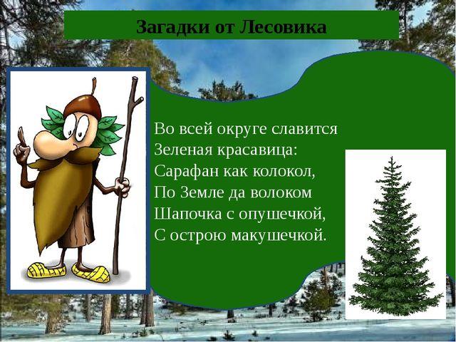Во всей округе славится Зеленая красавица: Сарафан как колокол, По Земле да в...