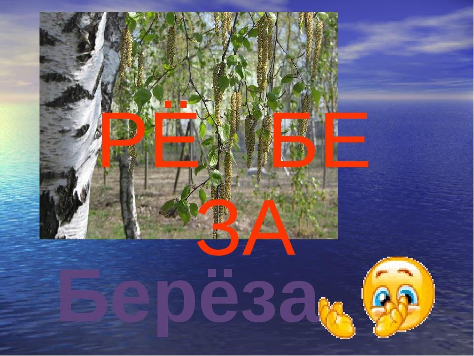 РЁ БЕ ЗА Берёза