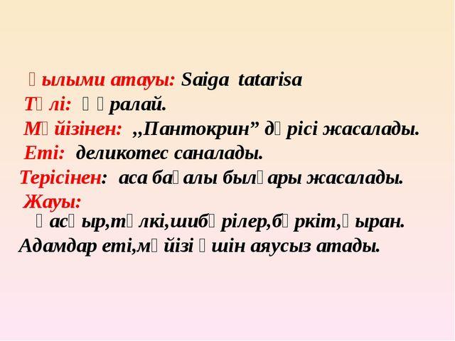 """Ғылыми атауы: Saiga tatarisa Төлі: Құралай. Мүйізінен: ,,Пантокрин"""" дәрісі ж..."""