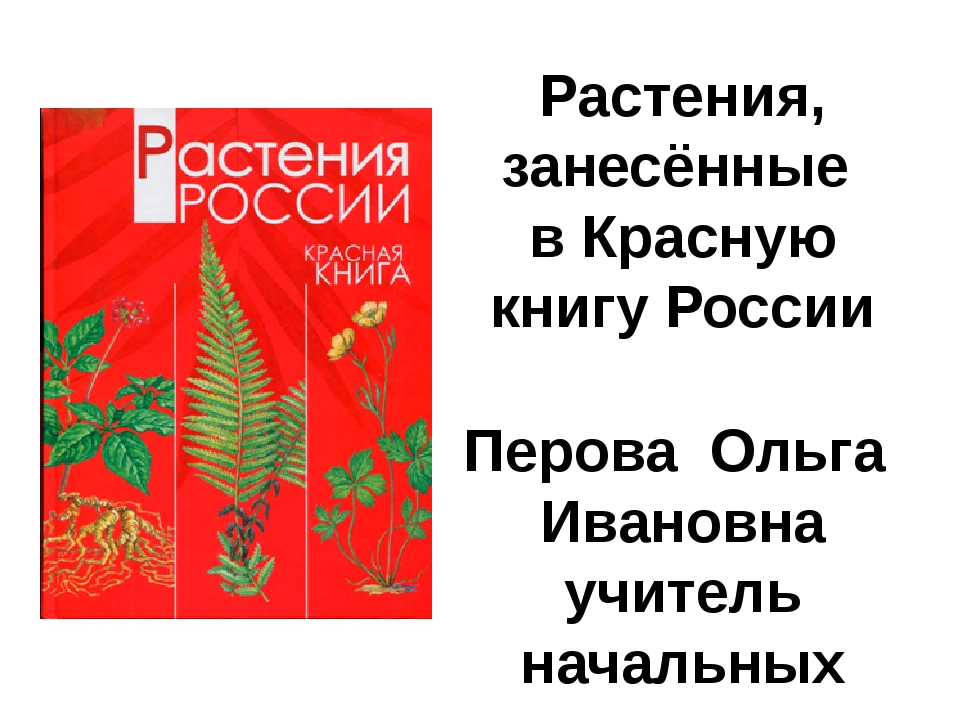 Подснежник узколистный Меч-трава обыкновенная Скабиоза Ольги Астрагал донской...