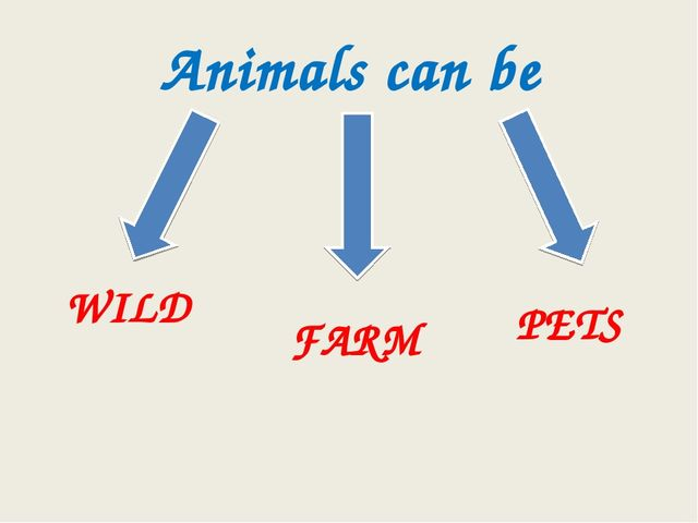 Animals can be WILD FARM PETS