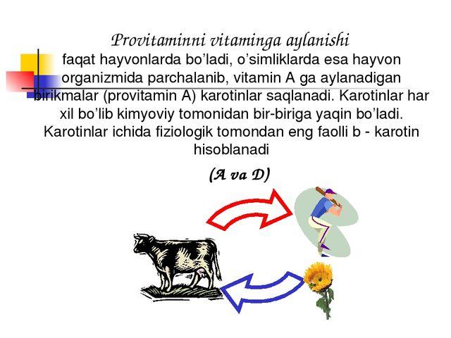 Provitaminni vitaminga aylanishi faqat hayvonlarda bo'ladi, o'simliklarda esa...