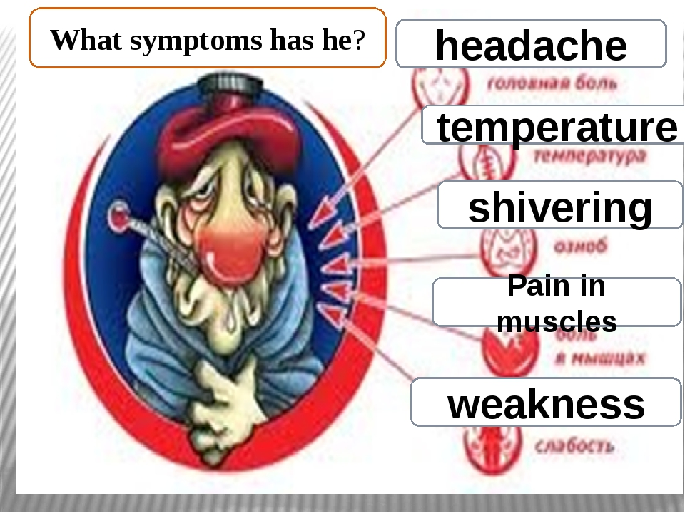 headache temperature shivering Pain in muscles weakness What symptoms has he?