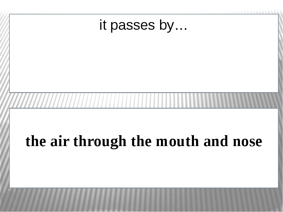 it passes by… the air through the mouth and nose