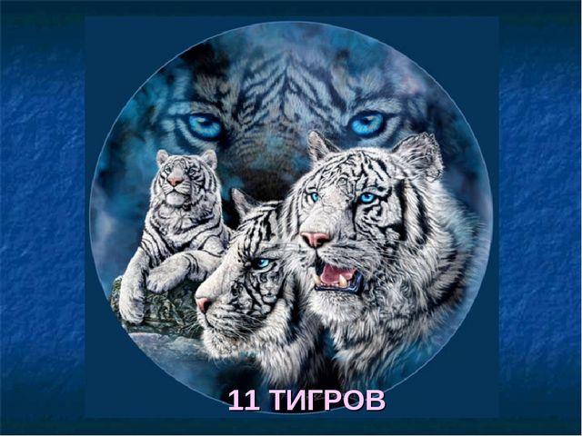 11 ТИГРОВ