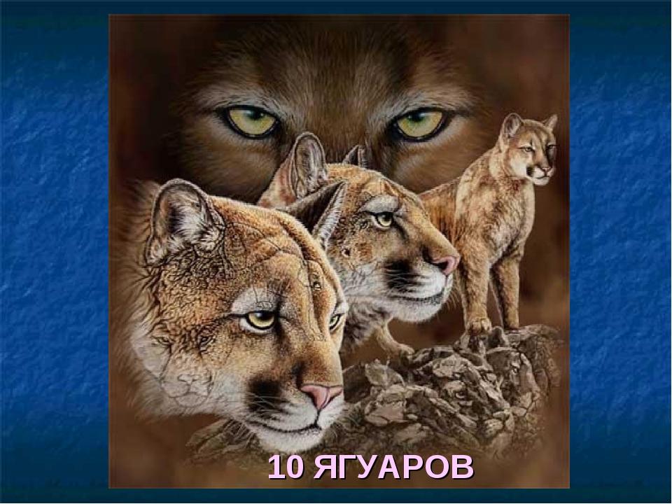 10 ЯГУАРОВ