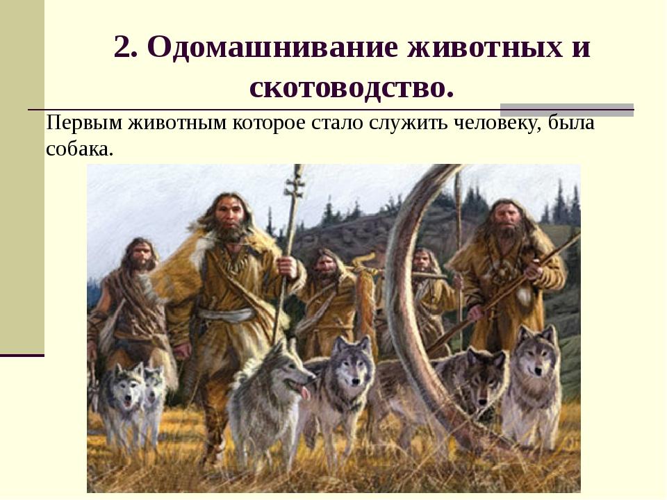 2. Одомашнивание животных и скотоводство.