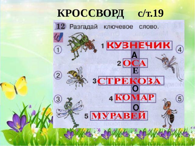 КРОССВОРД с/т.19 А Е О О