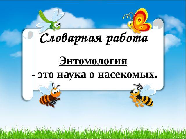 Словарная работа Энтомология - это наука о насекомых.