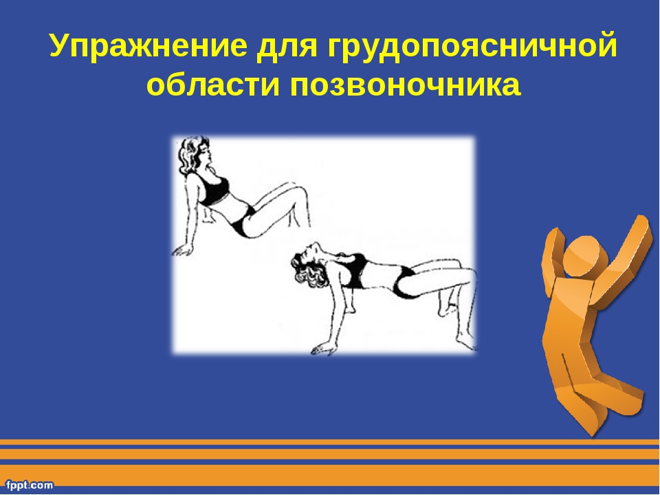 Упражнение для грудопоясничной области позвоночника
