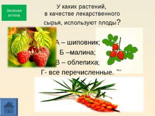 У каких растений, в качестве лекарственного сырья, используют плоды? А – шипо