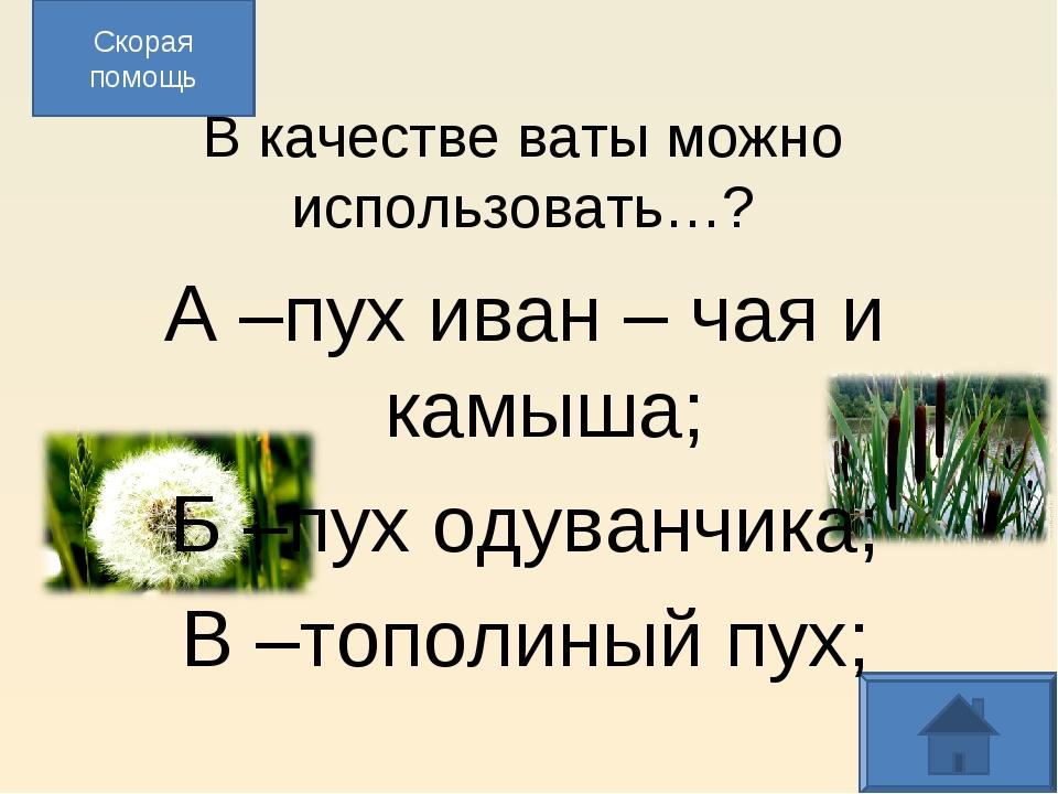 В качестве ваты можно использовать…? А –пух иван – чая и камыша; Б –пух одув...