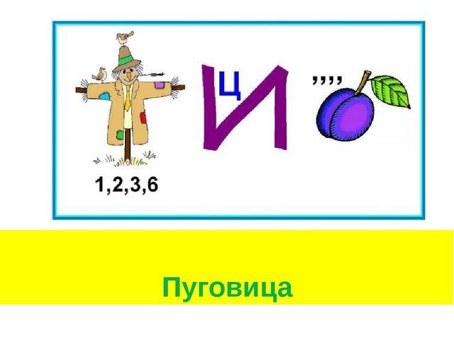 Пуговица
