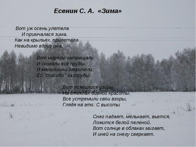 Есенин С. А. «Зима» Вот уж осень улетела И примчалася зима. Как на крыльях,...