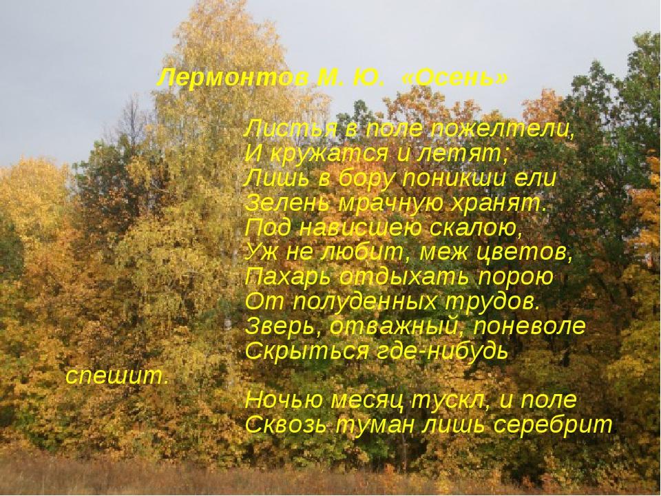 Лермонтов М. Ю. «Осень» Листья в поле пожелтели, И кружатся и летят; Лишь в...