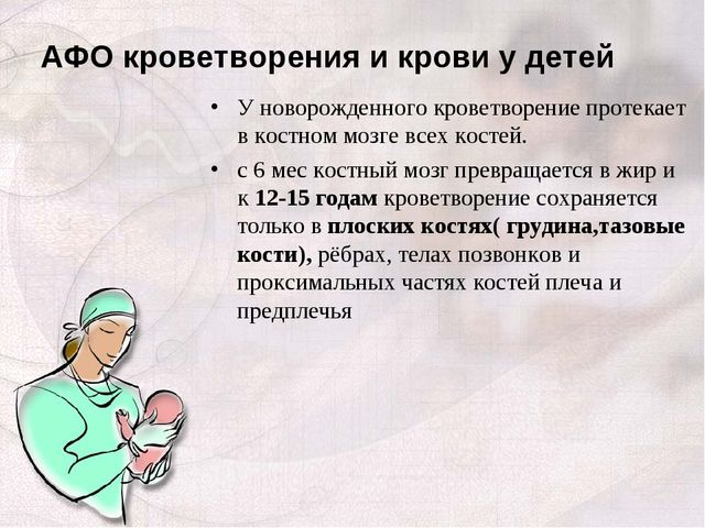 АФО кроветворения и крови у детей У новорожденного кроветворение протекает в...