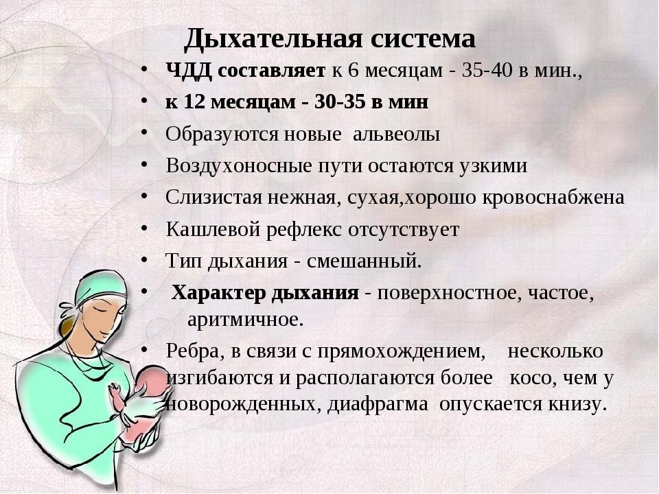 Дыхательная система ЧДД составляет к 6 месяцам - 35-40 в мин., к 12 месяцам -...