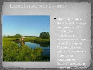 Святой источник Параскевы Пятницы находится в 2,5 км от Николо-Теребенского ж