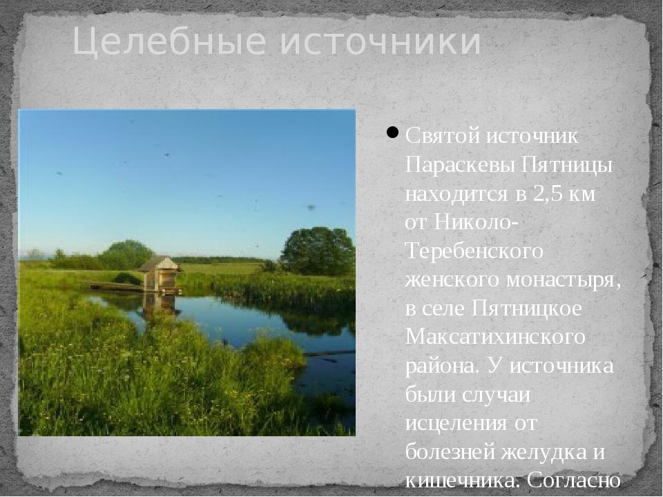 Святой источник Параскевы Пятницы находится в 2,5 км от Николо-Теребенского ж...