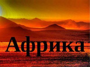 Африка Ерёмина Елена Михайловна