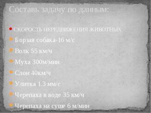 СКОРОСТЬ ПЕРЕДВИЖЕНИЯ ЖИВОТНЫХ Борзая собака-16 м/с Волк 55 км/ч Муха 300м/ми