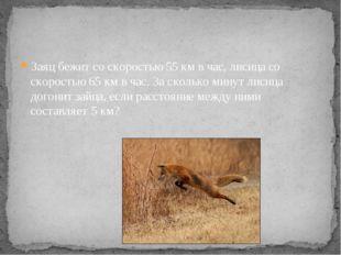 Заяц бежит со скоростью 55 км в час, лисица со скоростью 65 км в час. За скол