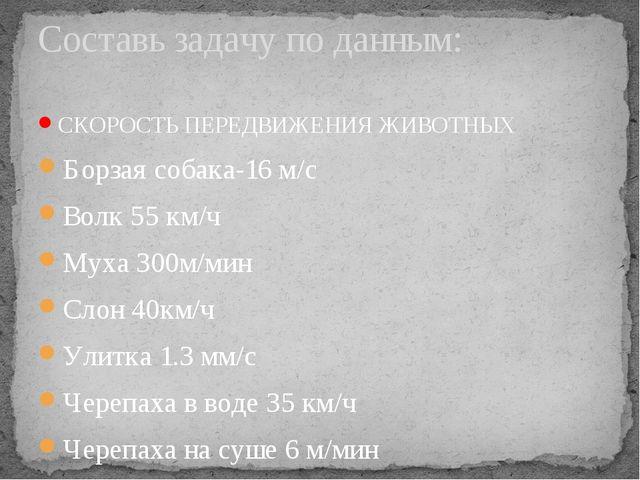 СКОРОСТЬ ПЕРЕДВИЖЕНИЯ ЖИВОТНЫХ Борзая собака-16 м/с Волк 55 км/ч Муха 300м/ми...