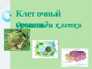 Клеточный уровень Органоиды клетки
