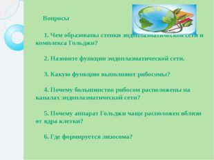 Вопросы  1.Чем образованы стенки эндоплазматической сети и компл