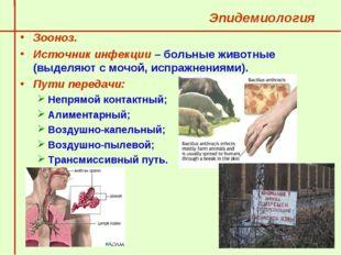 Эпидемиология  Зооноз.  Источник инфекции – больные животные (выделяют с мо