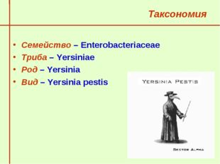 Таксономия Семейство – Enterobacteriaceae Триба – Yersiniae Род – Yersinia