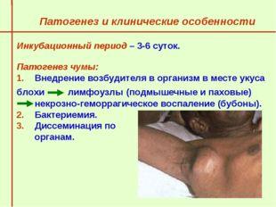 Патогенез и клинические особенности  Инкубационный период – 3-6 суток.   П