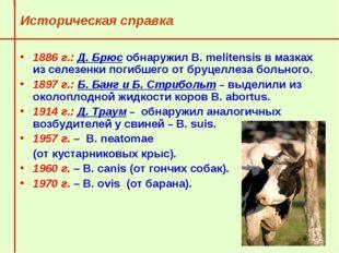 Историческая справка 1886 г.: Д. Брюс обнаружил В. melitensis в мазках из се