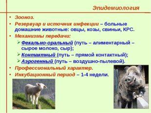 Эпидемиология  Зооноз.  Резервуар и источник инфекции – больные домашние жи