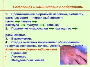 Патогенез и клинические особенности  Проникновение в организм человека, в об
