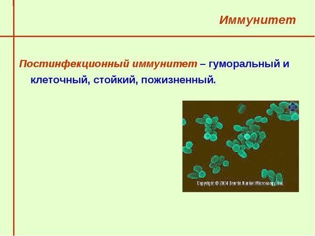 Иммунитет Постинфекционный иммунитет – гуморальный и клеточный, стойкий, пож...