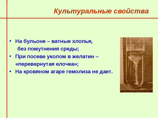 Культуральные свойства На бульоне – ватные хлопья,  без помутнения среды;...