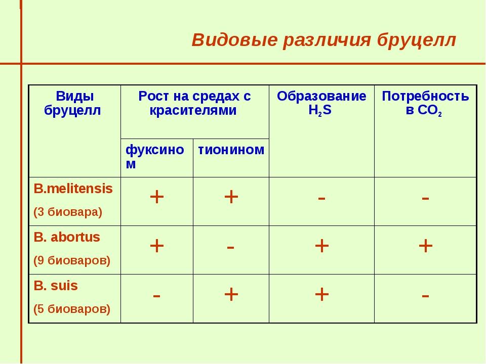 Видовые различия бруцелл