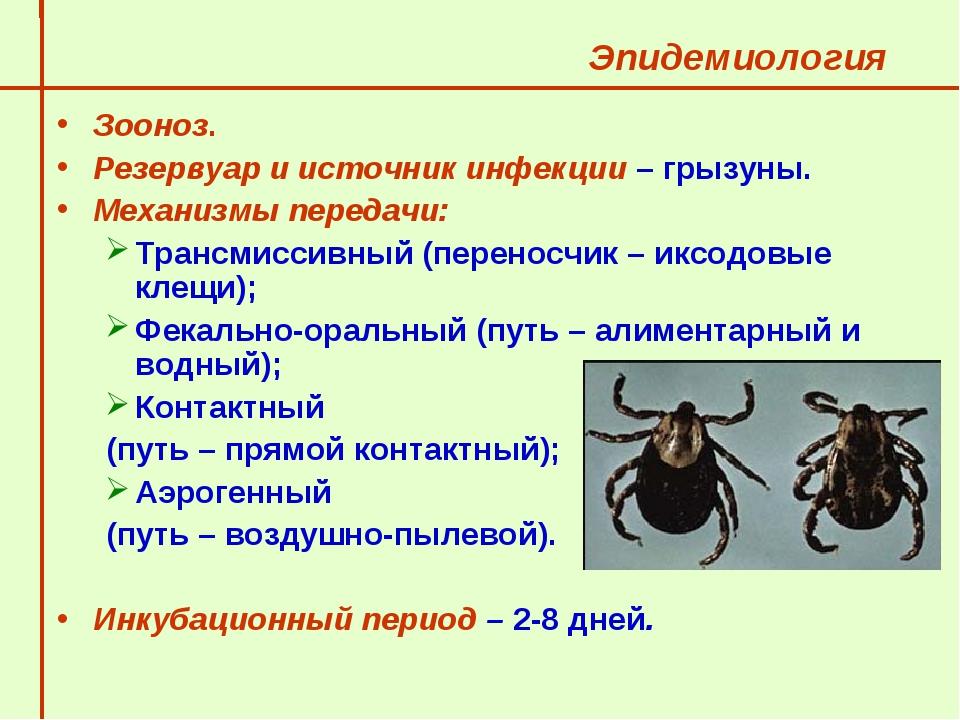 Эпидемиология  Зооноз.  Резервуар и источник инфекции – грызуны.  Механизм...