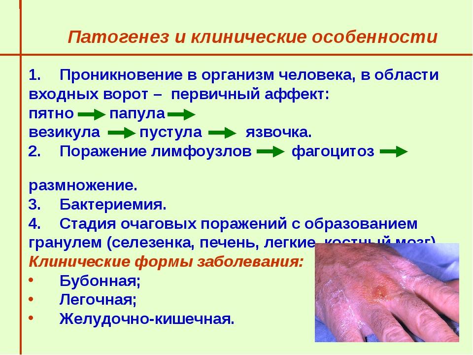 Патогенез и клинические особенности  Проникновение в организм человека, в об...