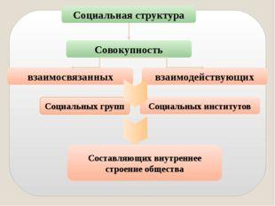 Социальная структура Совокупность взаимосвязанных взаимодействующих Социальны