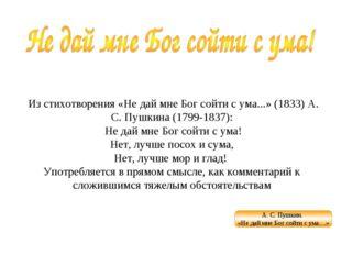 Из стихотворения «Не дай мне Бог сойти с ума...» (1833) А. С. Пушкина (1799-