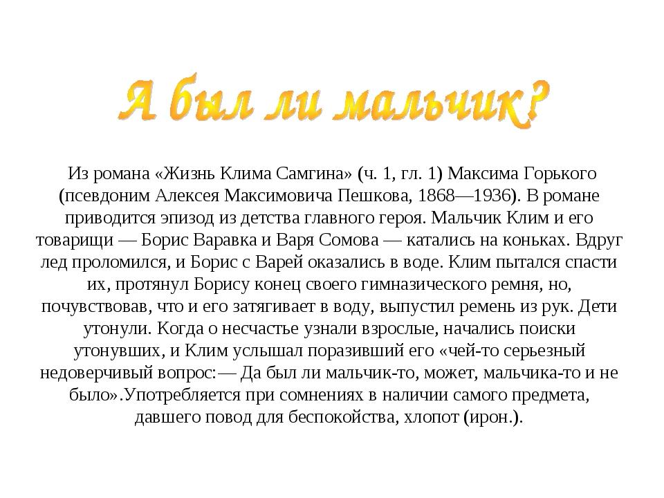 Из романа «Жизнь Клима Самгина» (ч. 1, гл. 1) Максима Горького (псевдоним Ал...
