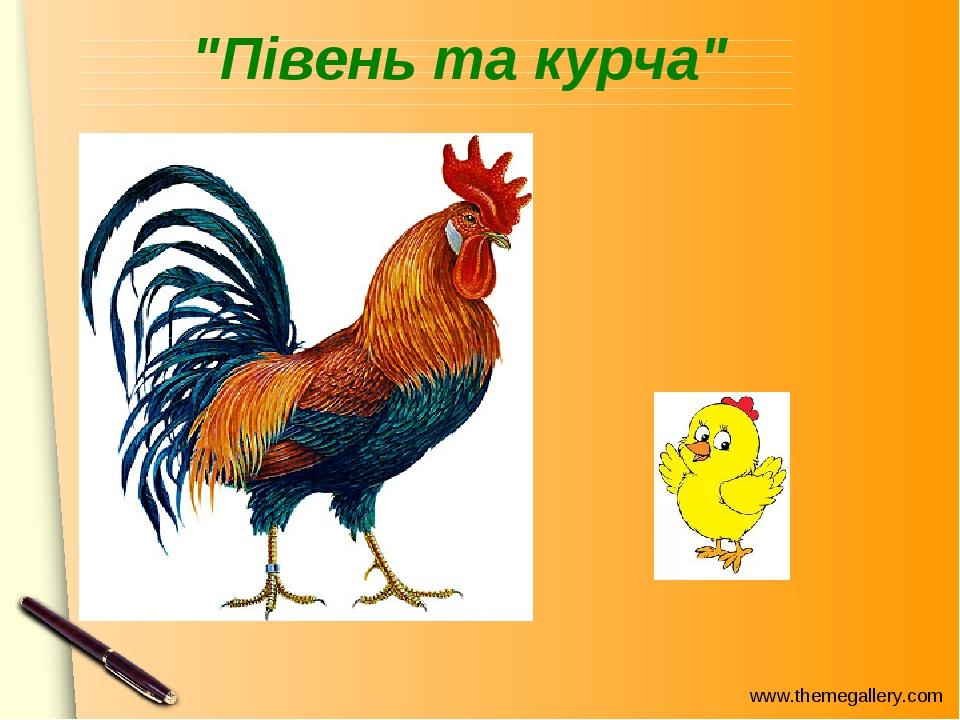 """""""Півень та курча"""" www.themegallery.com"""