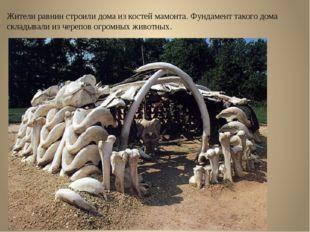 Жители равнин строили дома из костей мамонта. Фундамент такого дома складывал