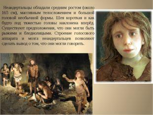 Неандертальцы обладали средним ростом (около 165 см), массивным телосложение