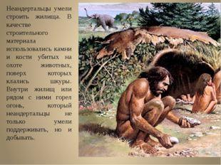 Неандертальцы умели строить жилища. В качестве строительного материала исполь