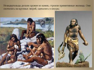 Неандертальцы делали оружие из камня, строили примитивные жилища. Они охотили